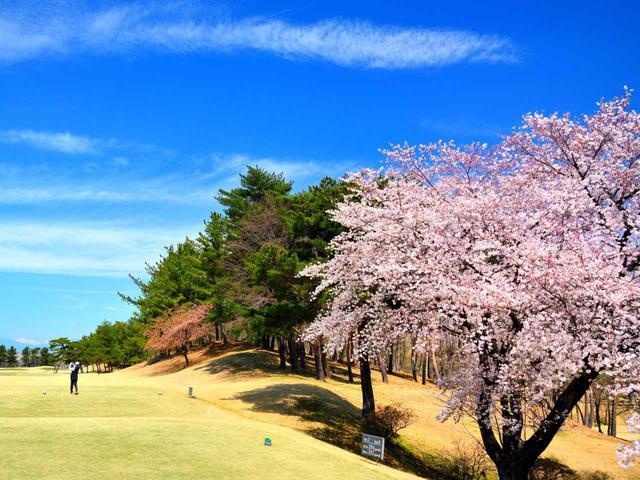 画像: こだまゴルフクラブ 1番ホール(394Y・P4)