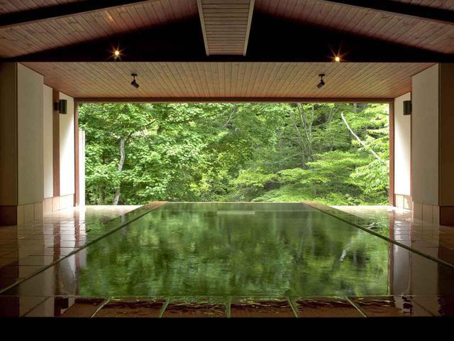 画像1: 立った姿勢で腰上まで浸かることができる立ち湯『雪月花』。アルカリ単純泉で肌がつるつるになる美肌の湯として評判が高い。寝ながら温泉に浸かれる寝湯や露天風呂付大浴場『白龍』