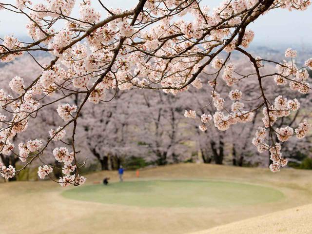 画像: 鳳凰ゴルフ倶楽部