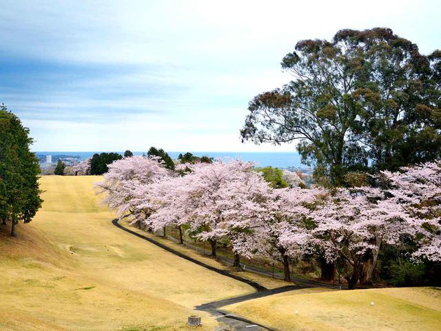 画像: 日立ゴルフクラブ