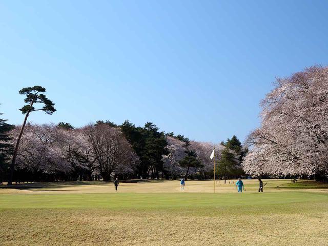 画像: 大宮ゴルフコース