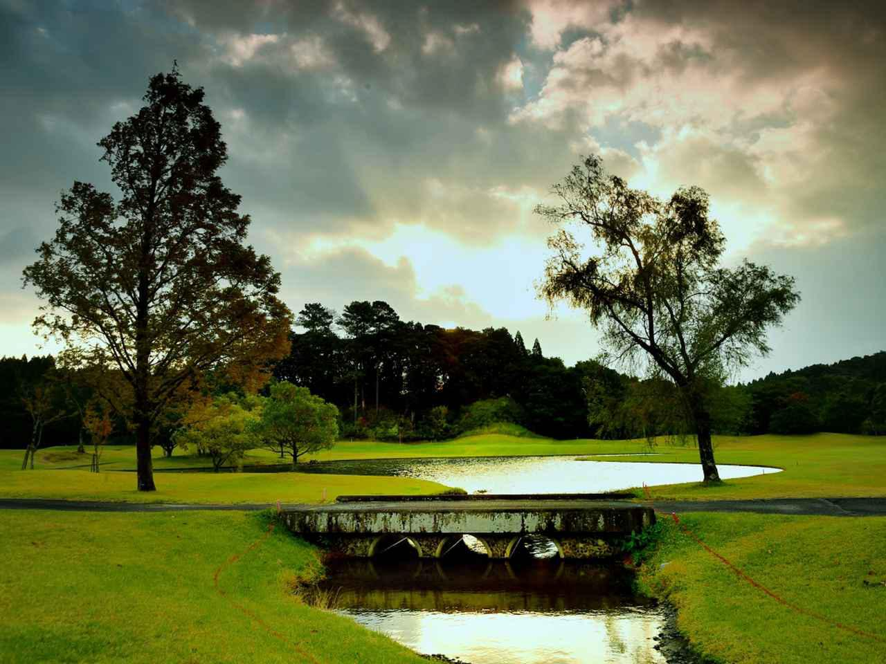 画像: 鹿児島高牧カントリークラブ グリーン左手前の池が美しい8番パー5。セカンドショットの番手選びがポイント