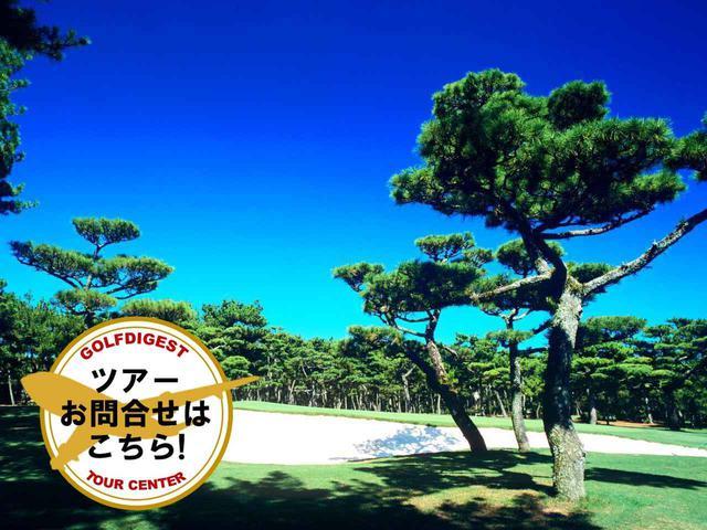 画像: 【宮崎・日程限定】フェニックスカントリークラブとトム・ワトソンゴルフコースを回る 2日間 2プレー(一人予約可能/抽選で無料宿泊券プレゼント/送迎付き) - ゴルフへ行こうWEB by ゴルフダイジェスト