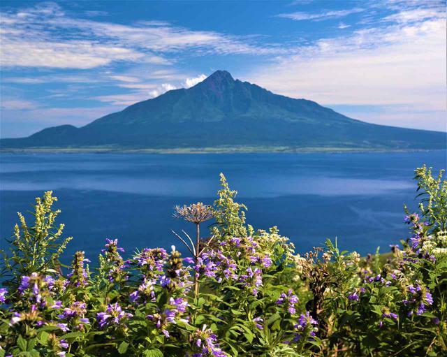 画像: 礼文島から利尻富士を望む