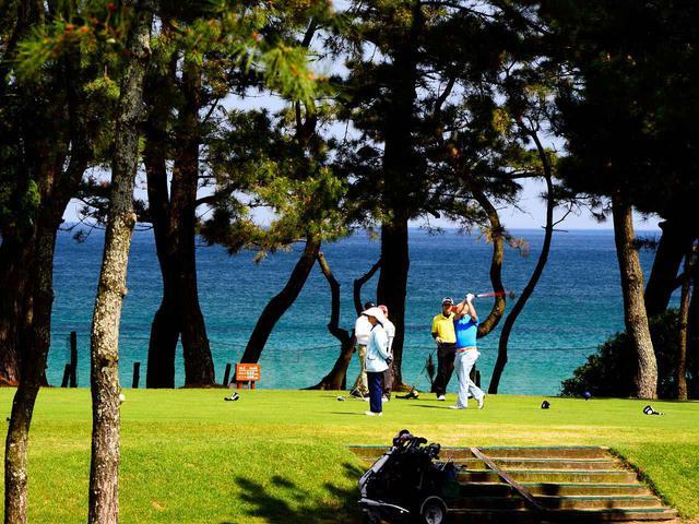 画像: 防風林の松林の中にコースがある。下関ゴルフ倶楽部