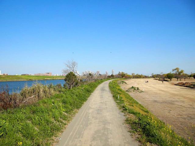 画像: コースと川を隔てる内堤防が台風で溜まった水の排出を妨げた