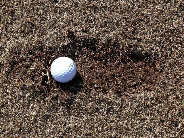 画像: ディボットの奥側(目標方向側)にボールが…