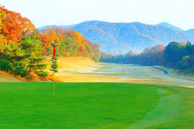 画像: 四季折々の美しい自然も見ごたえ十分