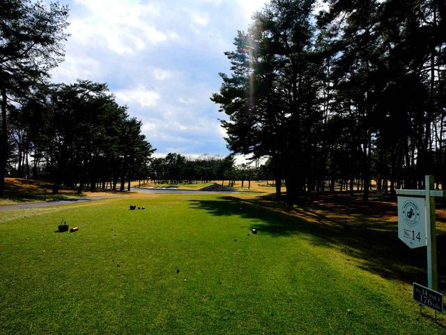 画像1: 太平等クラブ益子PGAコース 14番ホール(195Y・P3)