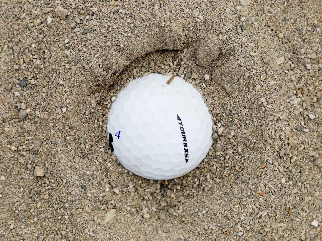 画像: 【クレーター状の目玉】 砂をかき出す!
