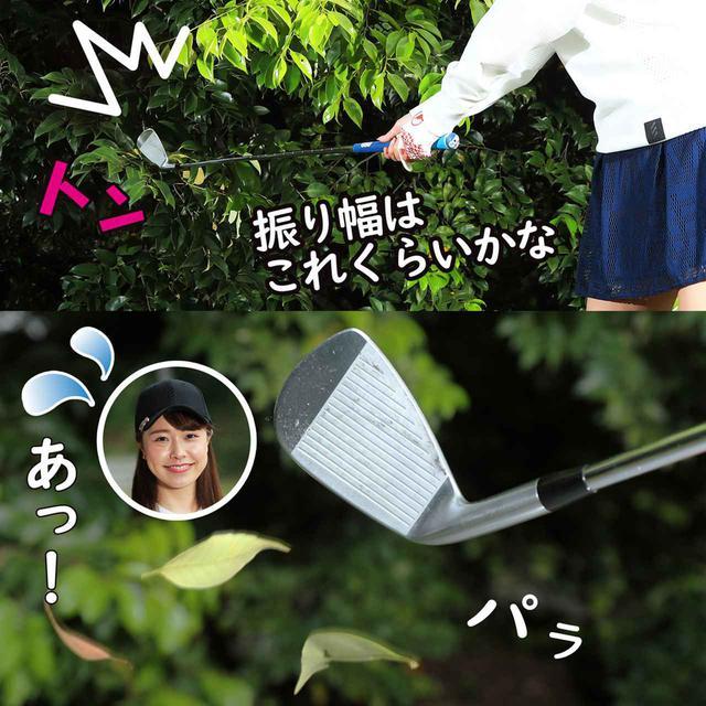 画像3: 【新ルール】素振りのときに、ヘッドが当たって葉っぱが落ちた! これはスウィング区域の改善になる?