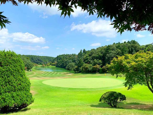 画像: プロテスト予選も開催するLPGA認定コース 「ゴルフ倶楽部 成田ハイツリー」(千葉県香取郡)