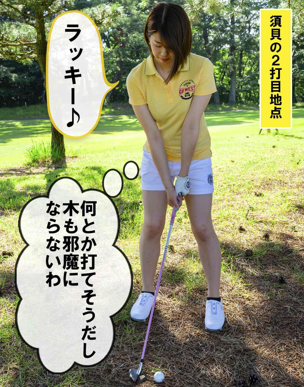 画像2: 【新ルール】地面に埋まった石を取り除きたい!! これってルール違反?