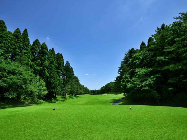 画像: 「PGM総成ゴルフクラブ」は プレーする歓びを満喫できる全27ホール