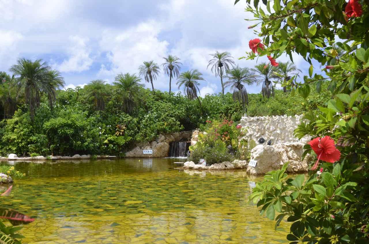 画像: 琥珀色の天然温泉「シギラ黄金温泉」
