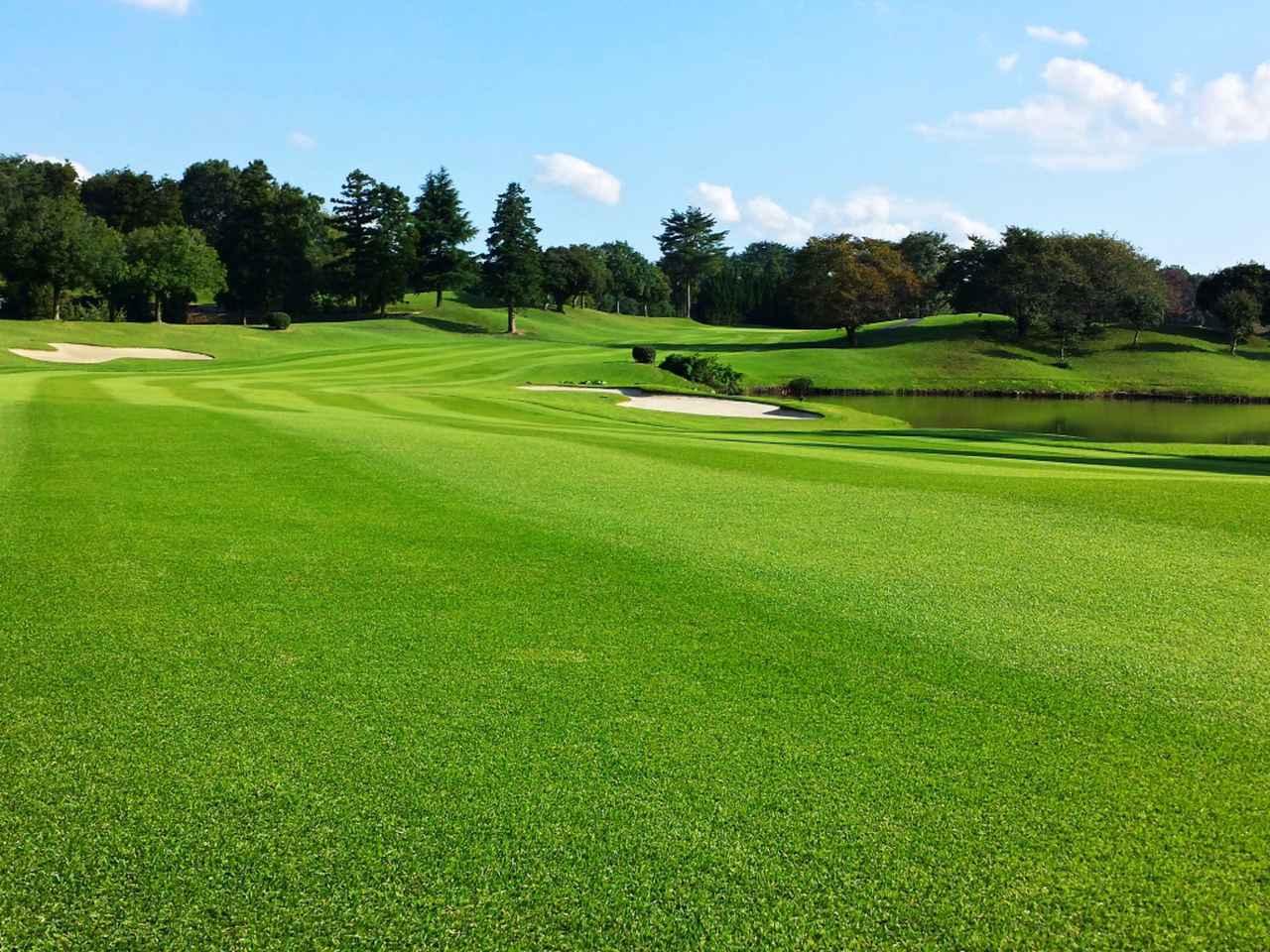 画像3: スプリングフィルズゴルフクラブ