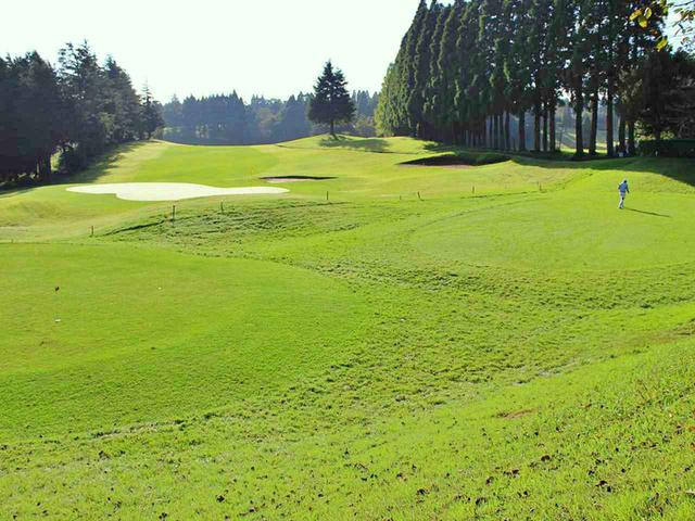 画像: 【ゴルフ会員権/はじめてのホームコース㊷】「干葉国際カントリークラブ」飽きの来ない45 ホール初めての会員権にピッタリ