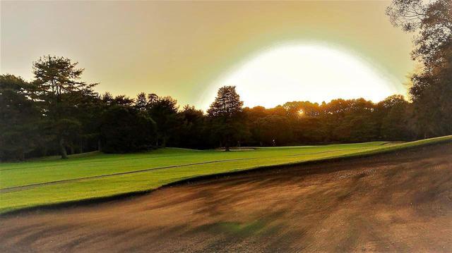 画像: 【千葉・中山カントリークラブ】松林の中を進むフェアウェイに、大小のうねり起伏。昭和の日本らしい風格です!「みんなが楽しめる」日本のベスト100コース探し - ゴルフへ行こうWEB by ゴルフダイジェスト