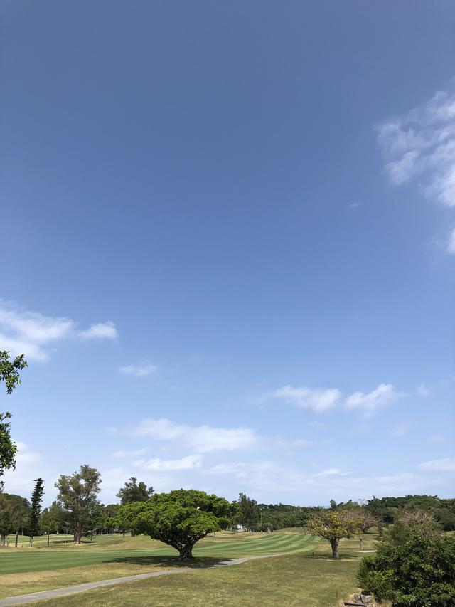 画像: 西・東コースはフラットで随所に池を配したレイアウト