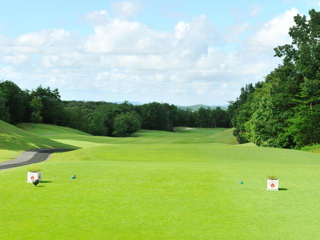 画像1: 花の木ゴルフクラブ