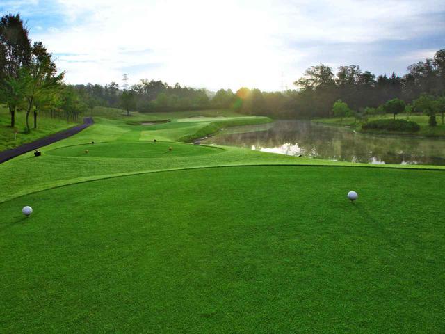 画像3: ニューキャピタルゴルフ倶楽部