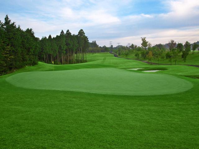 画像2: ニューキャピタルゴルフ倶楽部