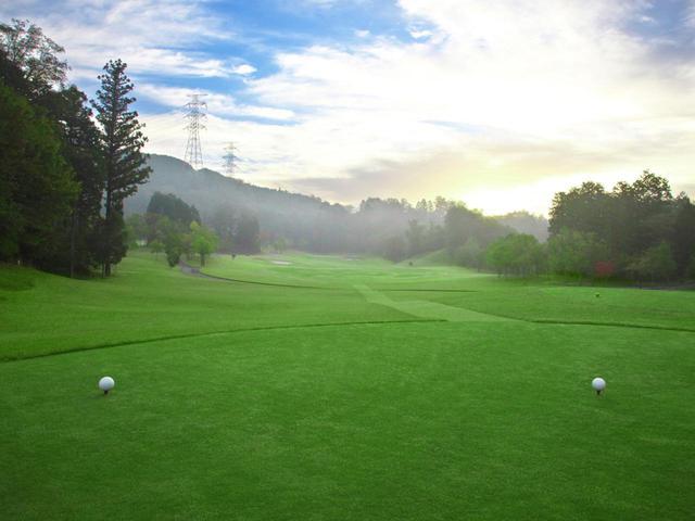 画像1: ニューキャピタルゴルフ倶楽部