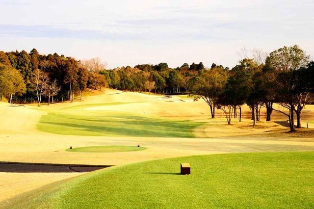 画像: 【茨城・美浦ゴルフ倶楽部】R・T・ジョーンズJrの「世界基準」コース。心臓バクバクの戦略的ドッグレッグが連なる。練習環境もピカイチ - ゴルフへ行こうWEB by ゴルフダイジェスト