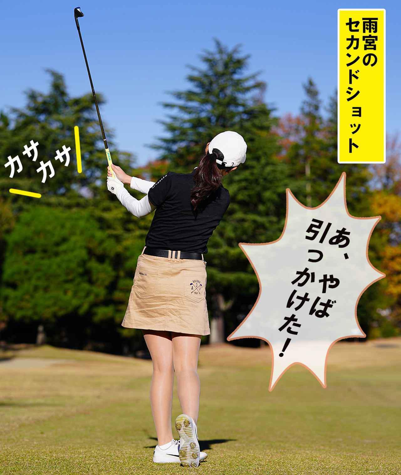 画像1: 【新ルール】木の上の球を枝を揺らして落とした。こういうときはどうする?