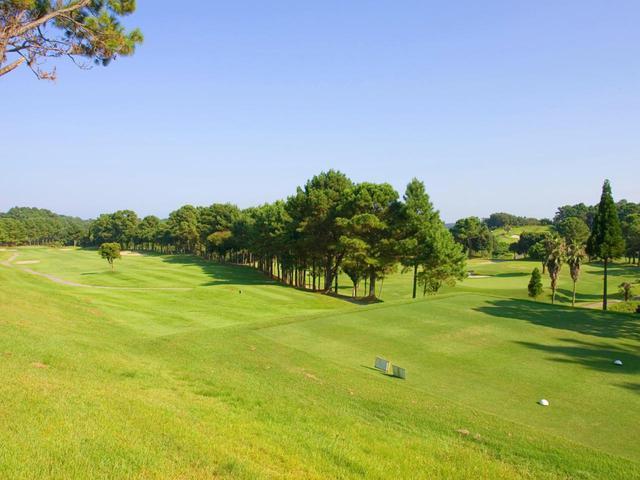 画像2: 宮崎国際ゴルフ倶楽部