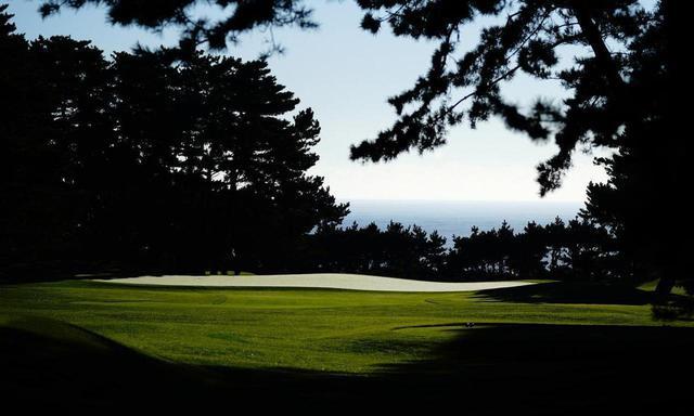 画像: 大洗GC 16番(245Y・P3)グリーン背景の海に向かって打つホール。海から吹く上げる風と松の枝が難度を高める