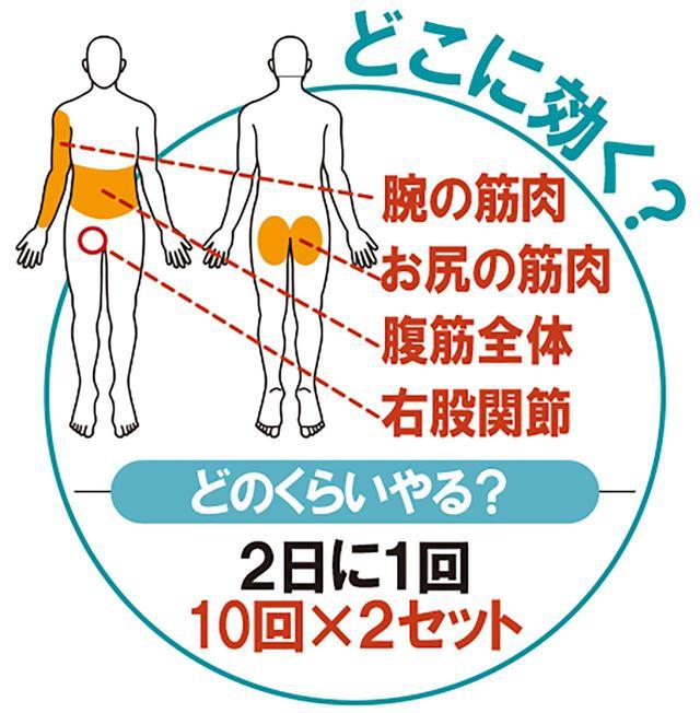 画像7: 【筋トレ】お家時間で飛距離アップ! しぶこ専属斎藤トレーナーが、あと10ヤード飛ばせるフィットネス器具を商品化