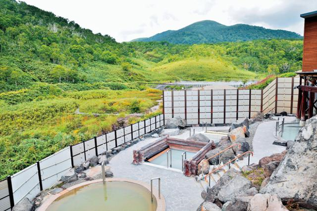 画像2: 【F-12187/北海道・ニセコ】今年の夏は3世帯家族でロングバケーション!優雅な9名様1室ペントハウスステイ4日間!