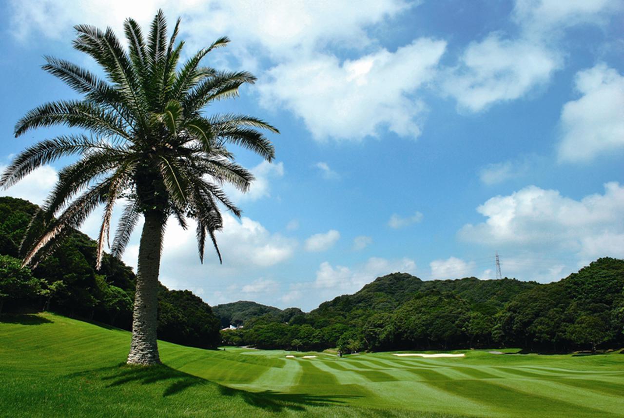 画像1: 【F-12385/千葉】南国の雰囲気を漂わせるコースでリゾートゴルフを満喫。勝浦ゴルフパック2日間