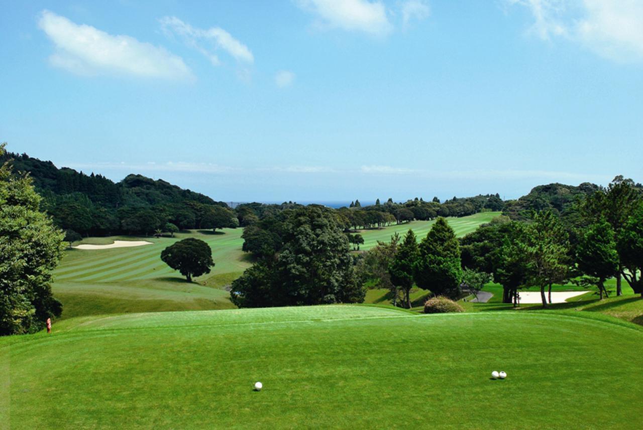 画像2: 【F-12385/千葉】南国の雰囲気を漂わせるコースでリゾートゴルフを満喫。勝浦ゴルフパック2日間