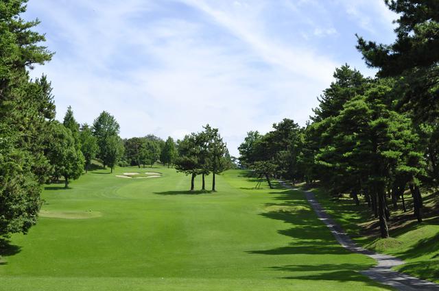 画像: 倉敷カントリー倶楽部 樹齢100年を超す巨木に囲まれた林間丘陵コース