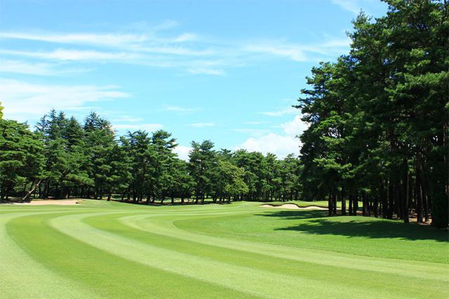 画像: 紫雲ゴルフ倶楽部 加治川コース№18
