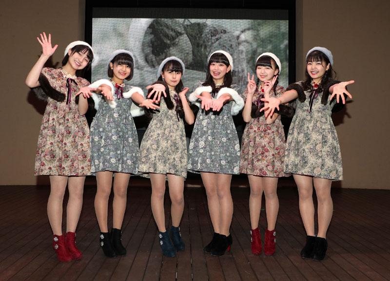 画像4: ハコイリ・ムスメ/クリスマスにオリジナル曲を収録したファーストアルバムを発売&リリイベを開催。来春には5期生の加入も発表