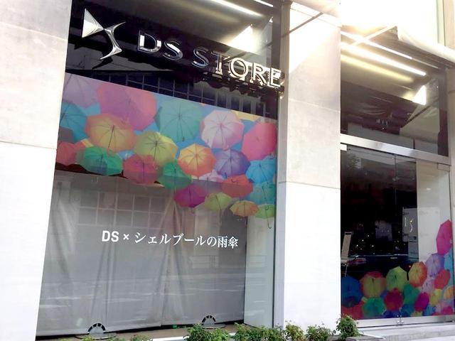 画像: キャンペーン中、DS STORE東京は、カラフルな傘で彩られる。
