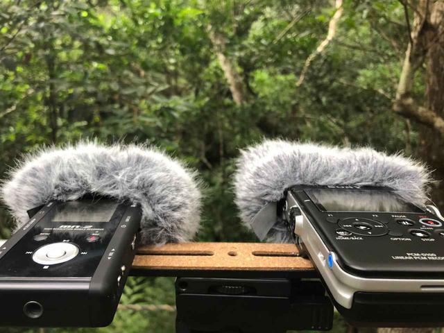 画像5: サウンドクリエイターのアイデアを米国QSC「Q-SYS」で具現化した、沖縄「DMMかりゆし水族館」【Prosound Report】