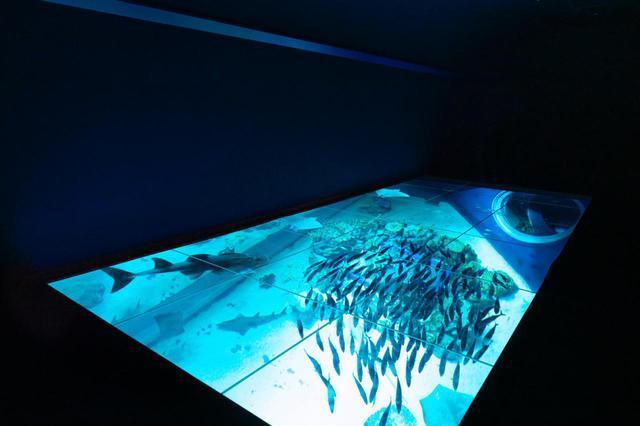画像1: サウンドクリエイターのアイデアを米国QSC「Q-SYS」で具現化した、沖縄「DMMかりゆし水族館」【Prosound Report】