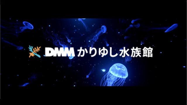 画像: 【DMMかりゆし水族館】はいさいゲート 映像 www.youtube.com