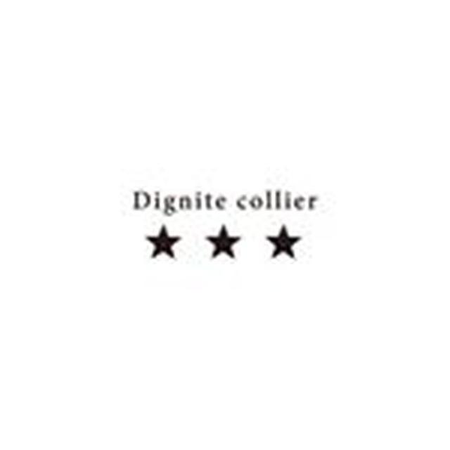 画像: Dignite Collier (@dignitecollier) 窶「 Instagram photos and videos