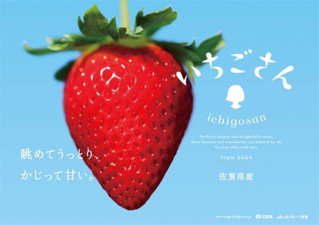 画像11: 佐賀ん酒3種飲み比べ × 佐賀の名産おつまみ × 新ブランド「いちごさん」