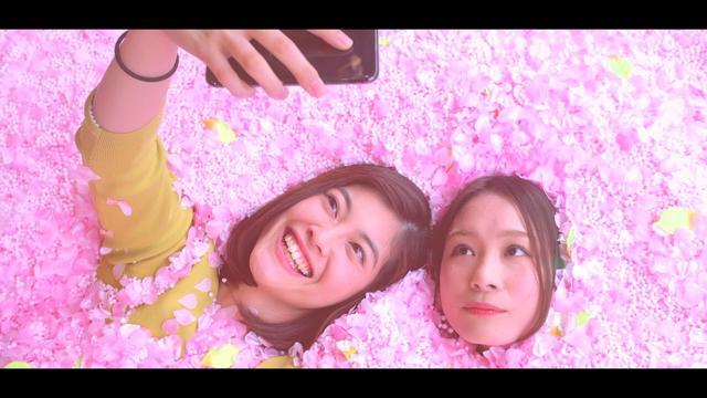 画像: SAKURA CHILL BAR | 桜舞い散るチルアウトバー #サクラチルバー #佐賀ん酒 www.youtube.com