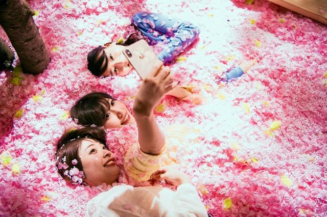画像2: いよいよオープン!120万枚の桜の花びらに埋もれて「体験型インドア花見」と佐賀の名産が楽しめる「SAKURA CHILL BAR by 佐賀」