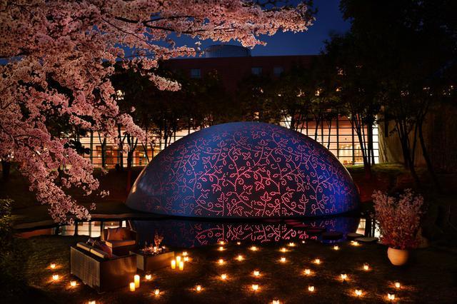 画像1: 【リゾナーレ八ヶ岳】ワインとスイーツで夜桜見物! 1日1組限定の宿泊プラン「ロマンティックロゼステイ」登場