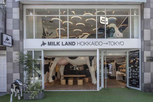 画像1: 東京・自由が丘「MILK LAND HOKKAIDO→TOKYO」で北海道産ミルクが味わえる♪