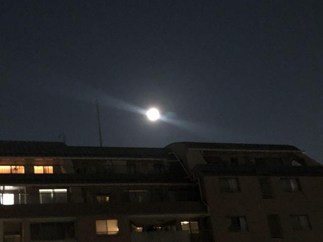 画像2: 夏の夜空に輝く満月「スタージェンムーン」で 浄化しました!