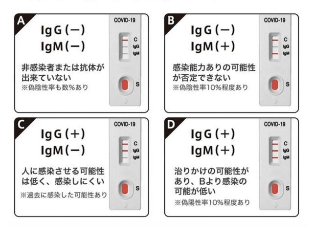 画像4: 抗体検査しました‼️
